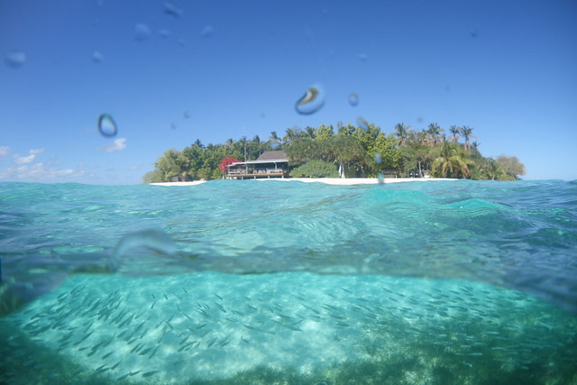 09192014Mounu Underwater