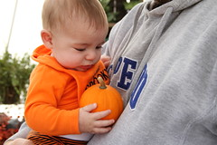 with the littlest pumpkin