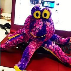 cartoon(0.0), animal(1.0), textile(1.0), purple(1.0), octopus(1.0), plush(1.0), stuffed toy(1.0), toy(1.0),