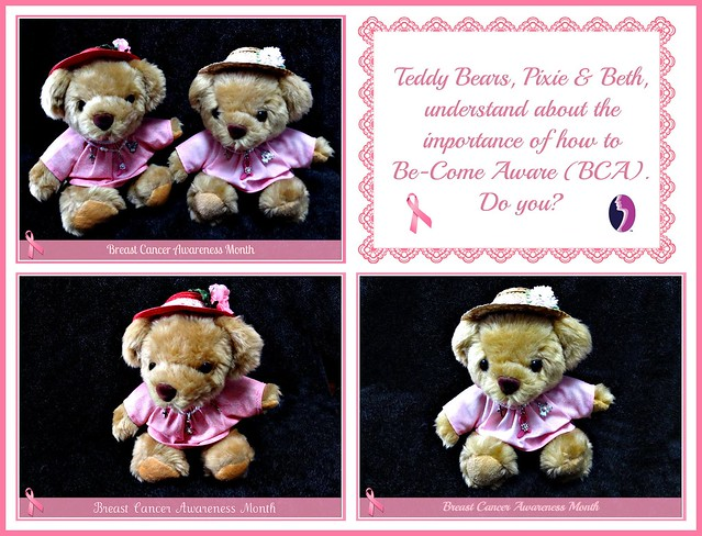Teddy Bears have Be-Come Aware! Are you?