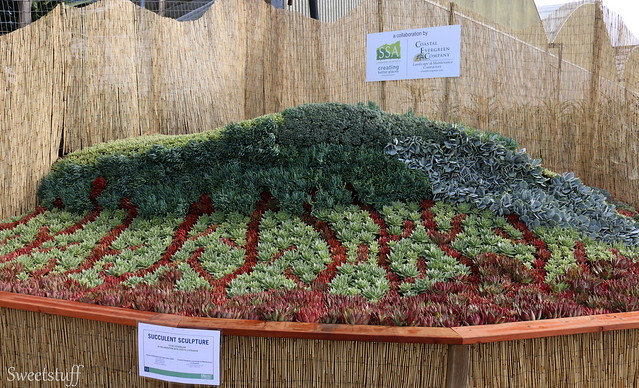 SUCCULENT SCULPTURE BY STEVEN SUTHERLAND AND ASSOCIATES (SSA) 2