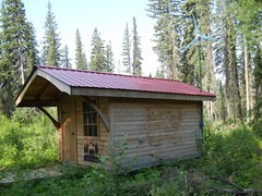 woodland, outdoor structure, hut, wood, shack, cottage, house, log cabin, outhouse, sugar house, shed, home, rural area,