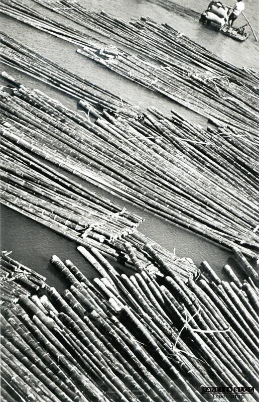 德米特里·巴尔特曼茨摄影067