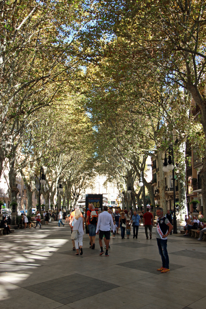 Tui_Marathon_Mallorca_2014_Palma2_02