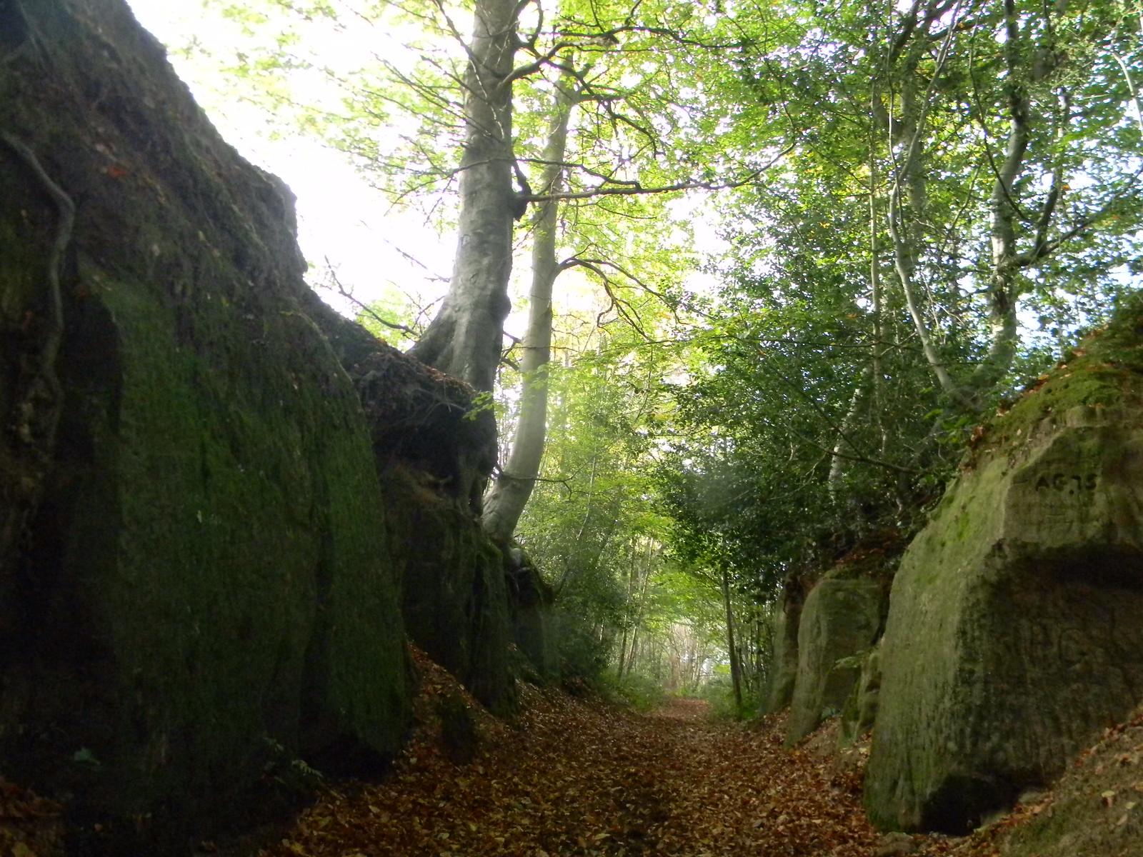 Through rocks Cowden to Hever