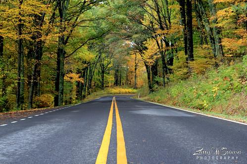 autumn autumnfoliage virginia fallcolors skylinedrive shenandoahnationalpark