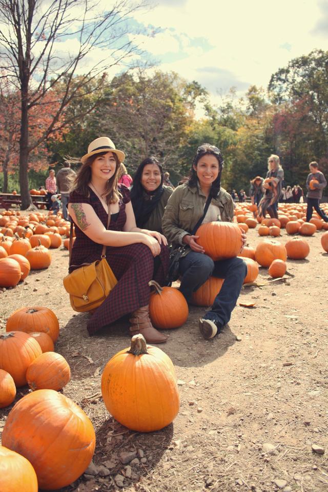 pumpkin_11