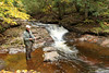 Fishing At Porcupine Mountains Wilderness State Park