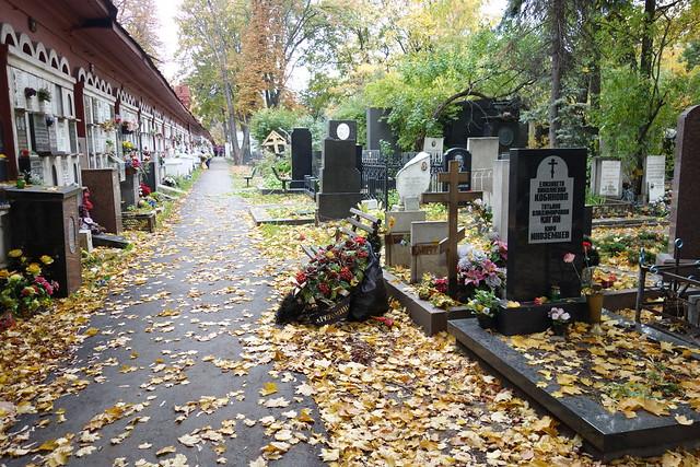 173 - Cementerio Novodevichy