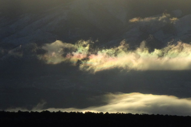 Crop from last shot. I only noticed this iridescence in post.