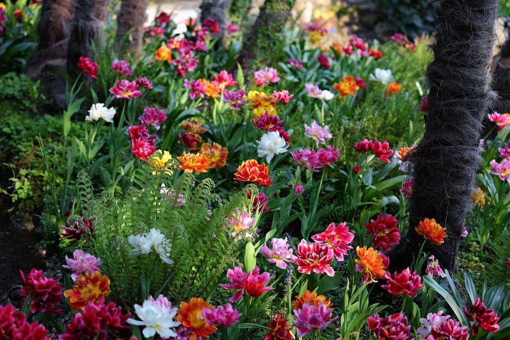 Gaudy Garden