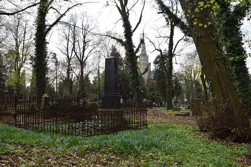 starycmentarzwłodzi theoldcemeteryinłódź graveyard cemetery green spring grave tomb nature tree ivy łódź lodz polska poland
