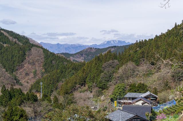 両神山が見える・・・赤谷登山口を進み振り返る