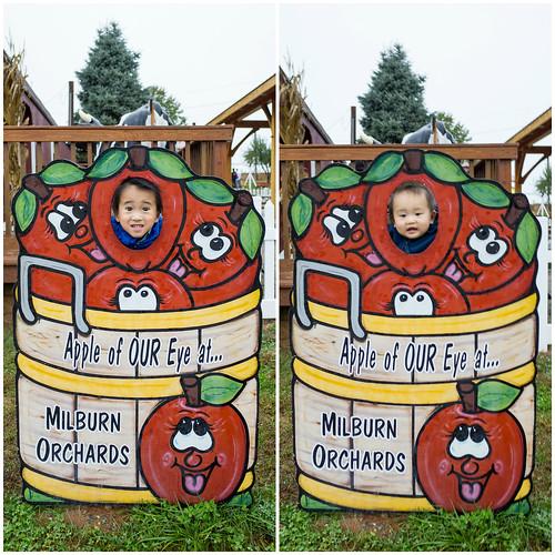 Milburn Orchards - Fall 2014