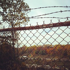 Autumn through barbed wire. Rt 1 heading toward Philadelphia.