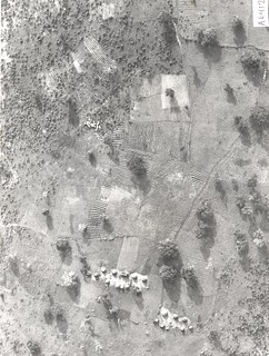 Aerial view of Fulani settlement surrounded by fields cultivated mainly by arable farmers –note kraal sites of fields Nigeria, 1982