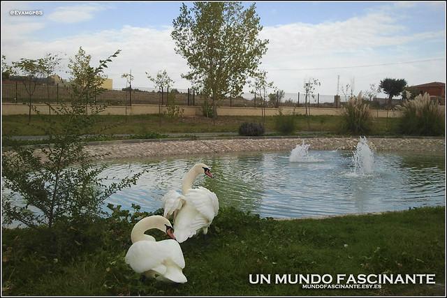 Parque de Guadamur