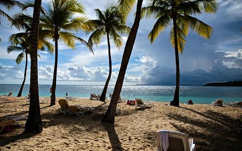 travel sunset sea sun beach playa palm dreams plage palmiers dreamscape guadeloupe îles couchédesoleil clubmed lacaravelle rêve canoneos6d tamron2470f28