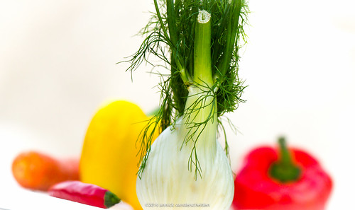 Culinary  oct 2014 fennel-4.jpg