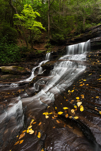 autumn fall nature water leaves creek georgia landscape outdoors stream waterfalls cascade tallulahgorge minnehahafalls