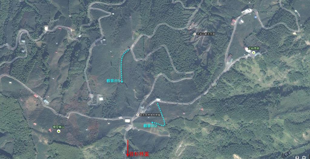 銀杏森林路線2