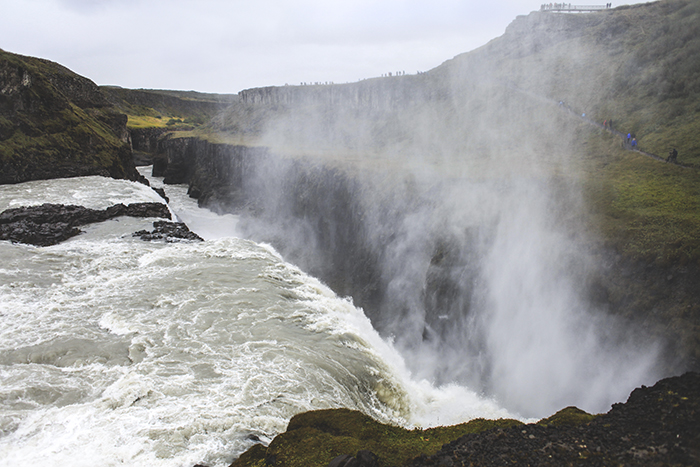 Iceland_Spiegeleule_August2014 090