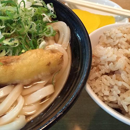 谷村新司の「昴」が流れる店内で、硬めんのごぼう天と、お茶碗のかしわ飯。ごちそうさまでした
