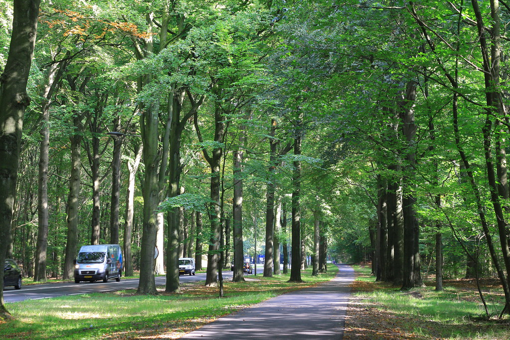 The Netherlands081