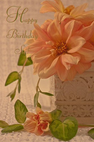 Peachy Dahlias - Happy Birthday Sis Card