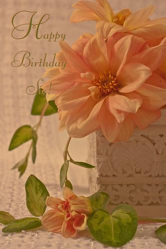 Peachy Dahlias - Happy Birthday Sis Card