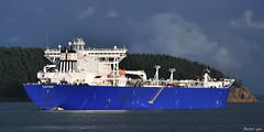 Tankers, Bulk Carriers & Freighters