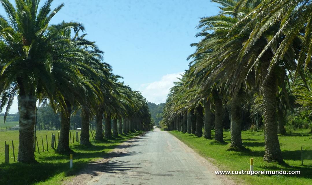 Recorriendo los caminos del Parque Nacional