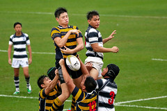 australian rules football, football player, sport venue, championship, sports, rugby league, rugby union, rugby football, team sport, tackle, player, rugby sevens, ball game, team,