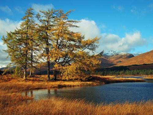 landscape scotland lochtulla