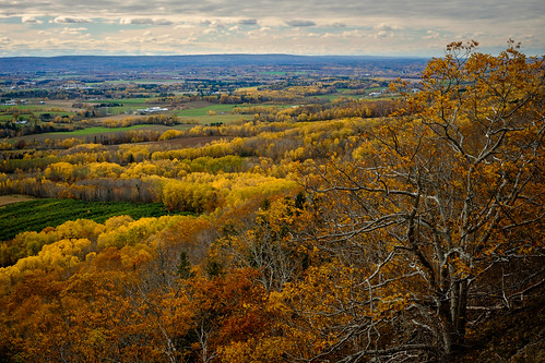 canada fall yellow novascotia valley overlook lookoff annapolisvalley 2014 thelookoff cans2s fujixe2