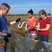 Nebraska Sept 2014 1: Snake fest and kangaroo rat rodeo