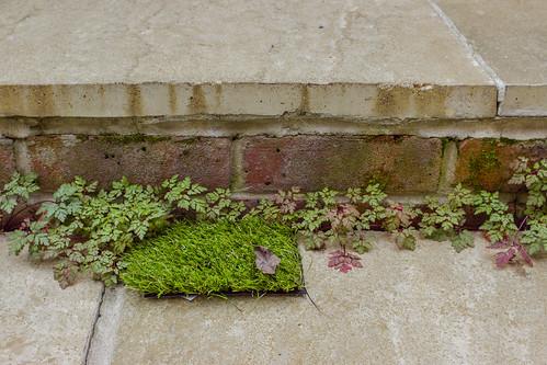 Artificial Grass Samples 2