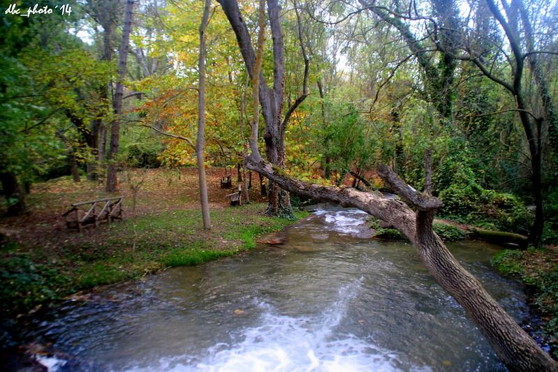 Colores del Otoño en Parque Natural del Monasterio de Piedra en Zaragoza