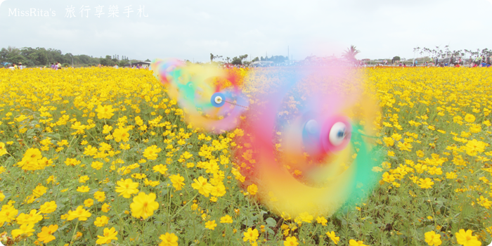 2014新社花海0--