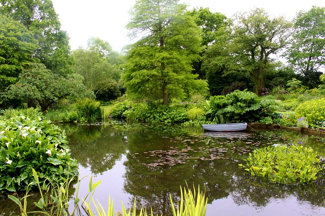 The lake, Beth Chatto Gardens