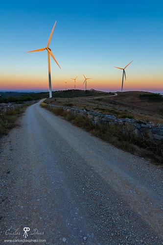 road portugal vertical sunrise warm bluesky windfarm goldenhour pombalinho distritodecoimbra degracias