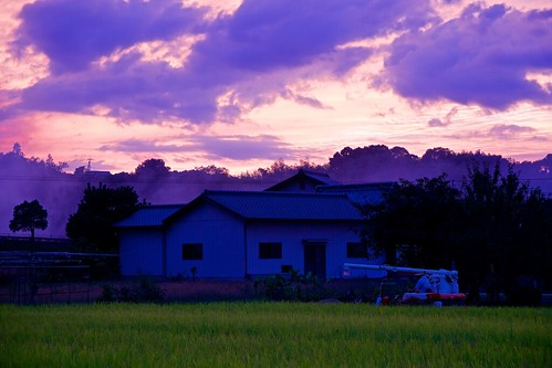 sunset tractor japan landscape rice sony 日本 farmer ricefield kagawa 風景 田んぼ 夕焼け 香川 manno 農家 トラクター apsc a6000 まんのう sel1670z e1670mmf4zaoss α6000 ilce6000 ©jakejung