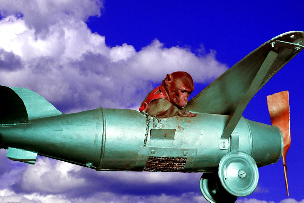 Spunky Flies The Crazy Plane Again