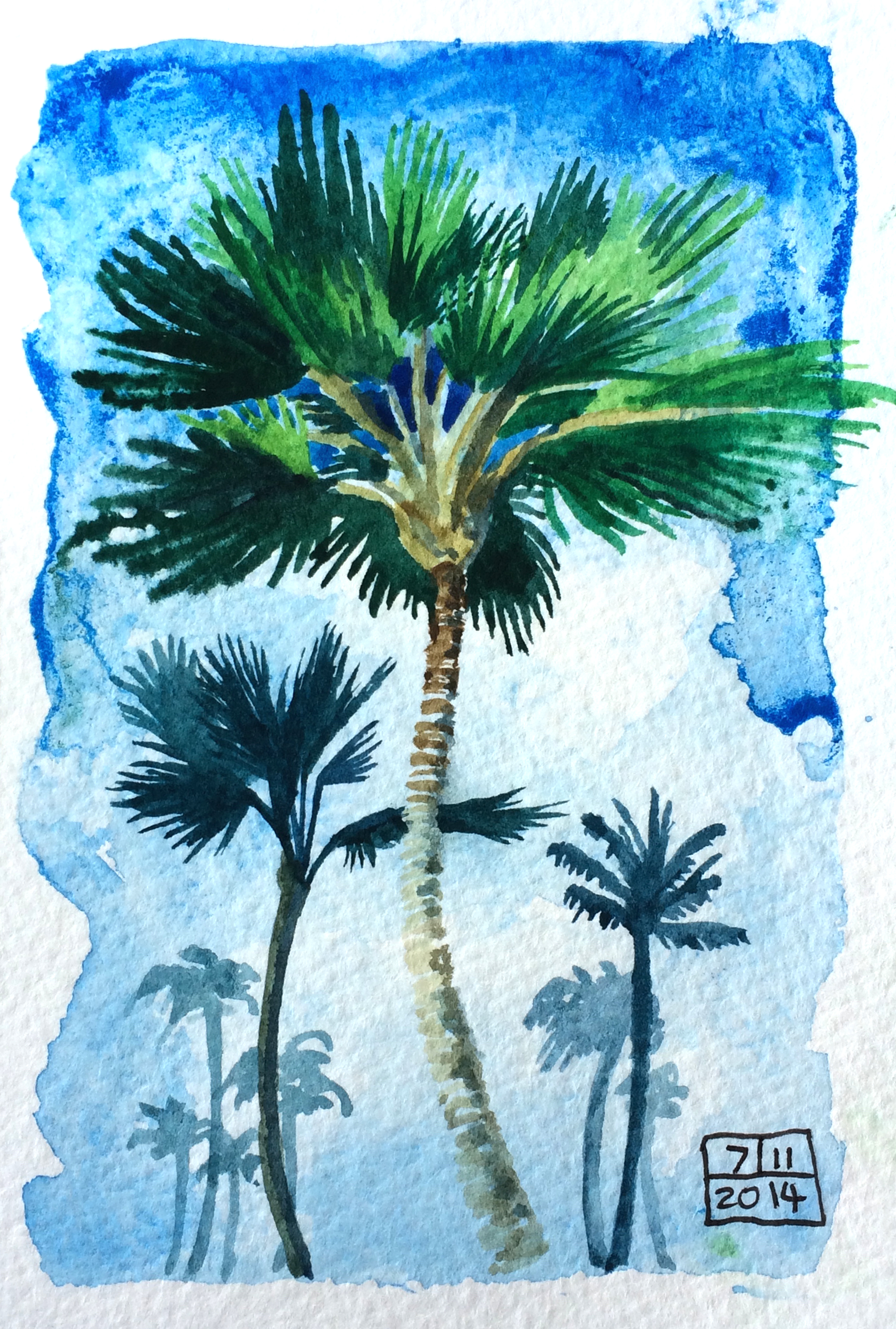Palm trees on Maui
