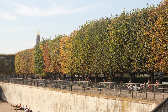 Paris in Autumn: Tuileries Gardens