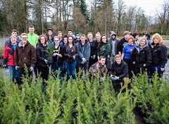 Tahoma Horticulture class helping us pot trees at the Greenhouse