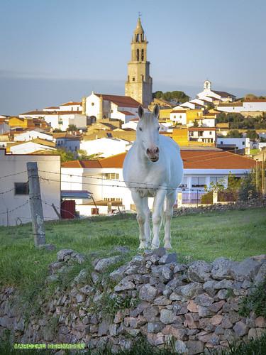 Spain - Cordoba - Pedroche