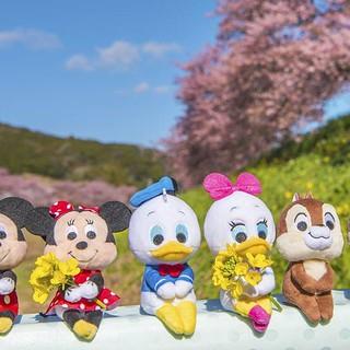 T-ARTS 布偶新系列 ディズニーキャラクター「ちょっこりさん(chokkorisan)」 第一彈推出 18 種迪士尼人氣角色!