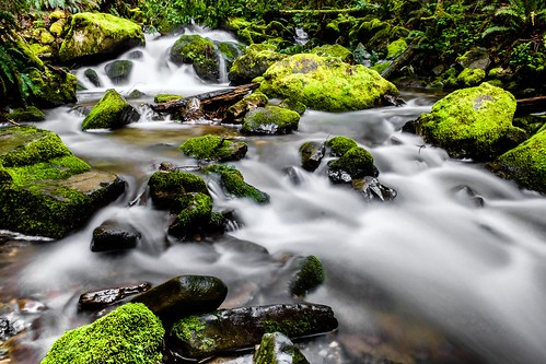 chuckanutdrive oystercreek waterfall bow washington unitedstates us creek water longexposure