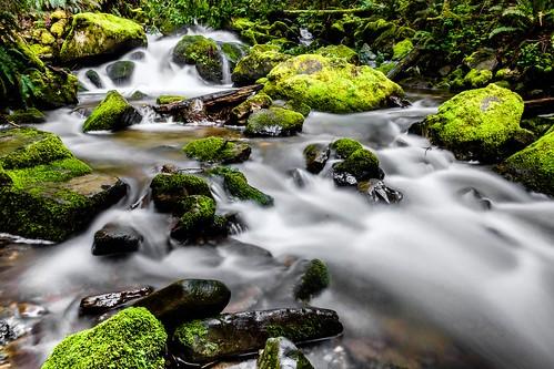 chuckanutdrive oystercreek waterfall bow washington unitedstates us creek water longexposure